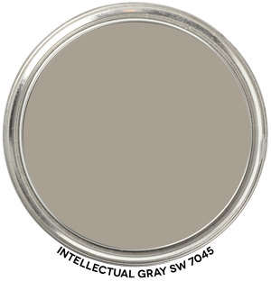 Intellectual Gray 7045 by Sherwin-Williams