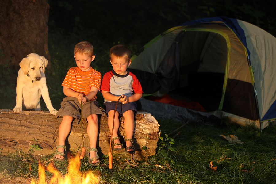 Proper Etiquette For Dog Friendly Campgrounds