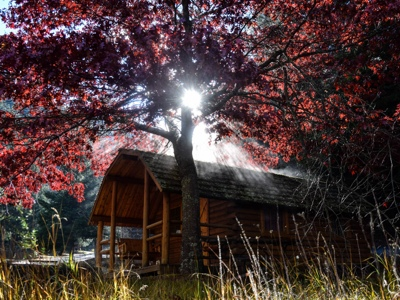 Cabins In The Fall