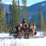 Sleigh rides in the winter at Winding River Resort Village in Grand Lake