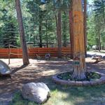 Playground, volleyball, basketball, pool tables, horseshoes, and more at Blue Spruce RV Park! (North of Bayfield Colorado)
