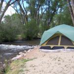 Tent sites -- camping in grassy meadow or creekside, your choice at Chalk Creek RV Park & Campground near Buena Vista Colorado
