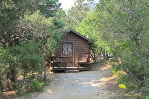 One of our 11 Cozy Cabins, nestled in the trees ~ Cutty's Hayden Creek Resort (Coaldale Colorado)