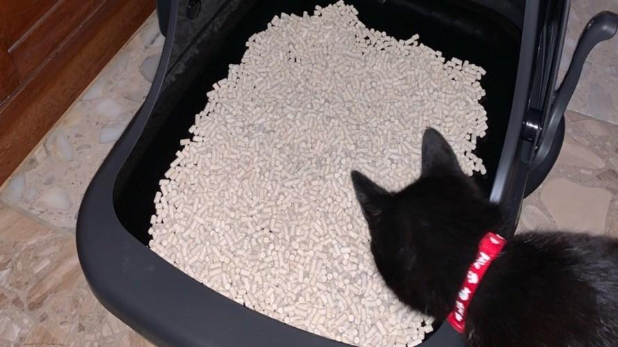 猫も喜んだ快適なトイレ