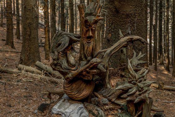 scultura sentiero espressioni
