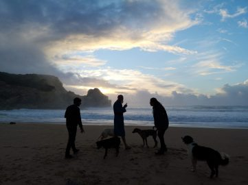 People and dogs in sunrise at the beach in Portugal