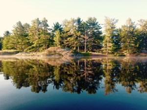 mirror image from Gurd Lake morning paddle
