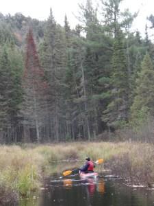 me-paddling-from-kyra-2