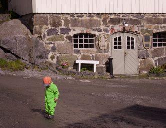 Merlin auf Erkundung in Nusfjord