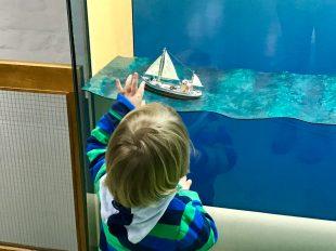 Kleine Preziosen im Deutschen Meeresmuseum