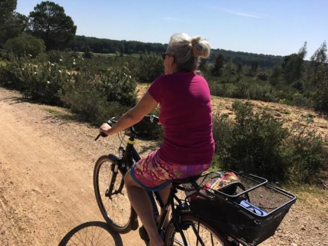 Welke techniek wordt er gebruikt in de camper om met de e-bikes te rijden?