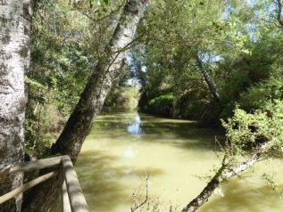 De rivier Guadiamar bij het gelijknamige bezoekerscentrum in Aznalcázar