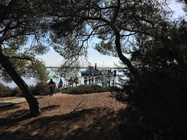 Dit bootje brengt je vanuit Sanlúcar naar Doñana.