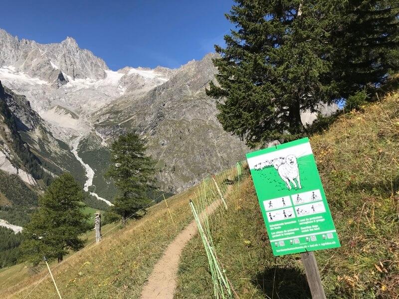 Een waarschuwing in La Fouly bij de Mont Blanc om deze Zwitserse Mastiff zijn werk te laten doen.