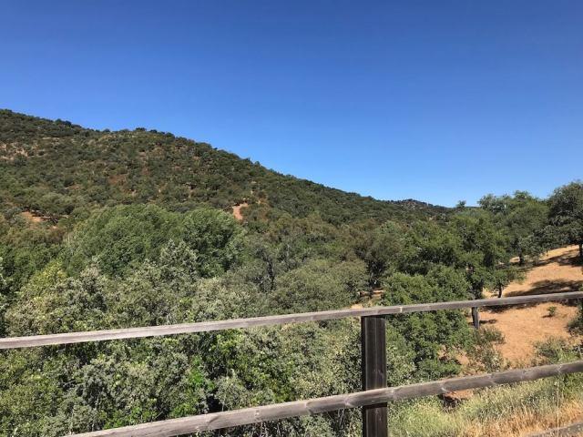 Het heuvellandschap langs de Via Verde van Sierra Norte de Sevilla.