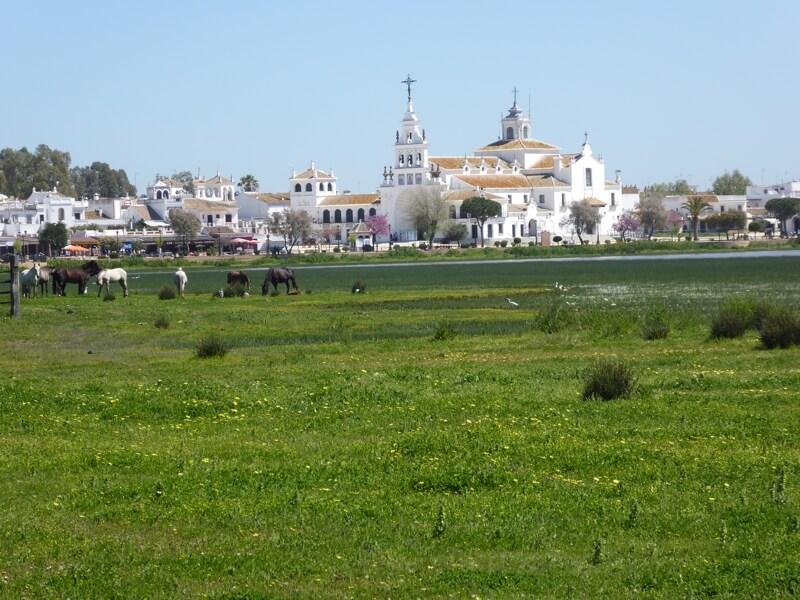 El Rocío is dé toeristische trekpleister van Doñana. Het bedevaartsoord ligt aan de rand van het natuurpark en trekt tijdens Pinksteren meer dan een miljoen bezoekers. (Costa de la Luz Noord).