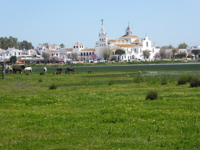 El Rocío is dé toeristische trekpleister van Doñana. Het bedevaartsoord ligt aan de rand van het natuurpark en trekt tijdens Pinksteren meer dan een miljoen bezoekers.
