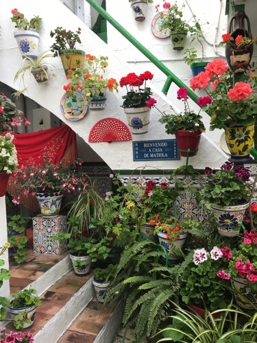 De patio aan de Calle Sebastián.