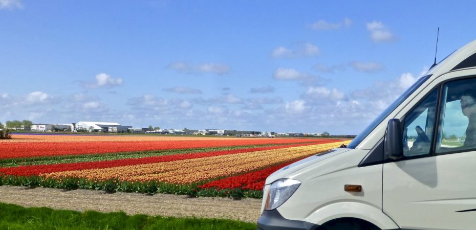 The Bulb Fields of Holland