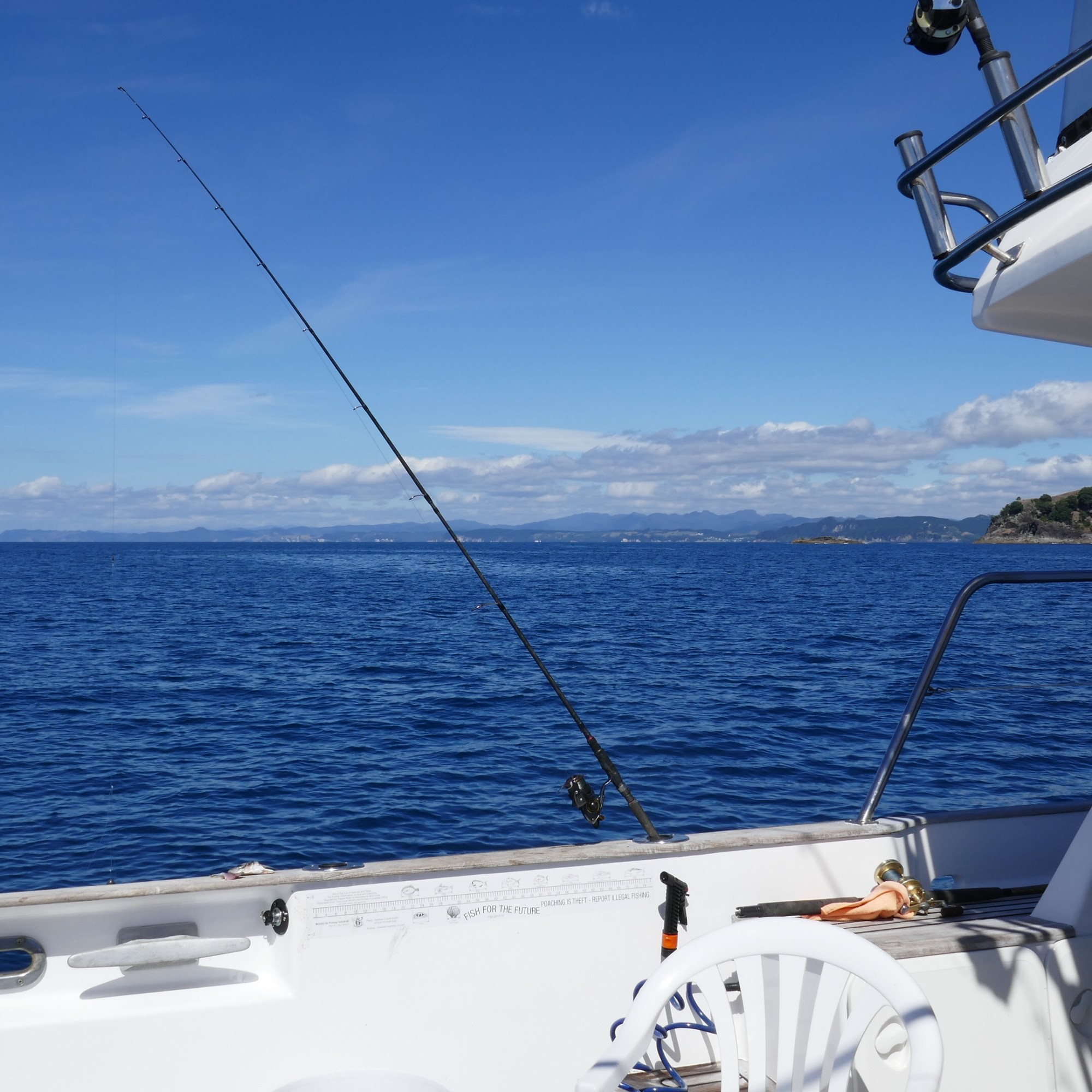 North Island Fishing