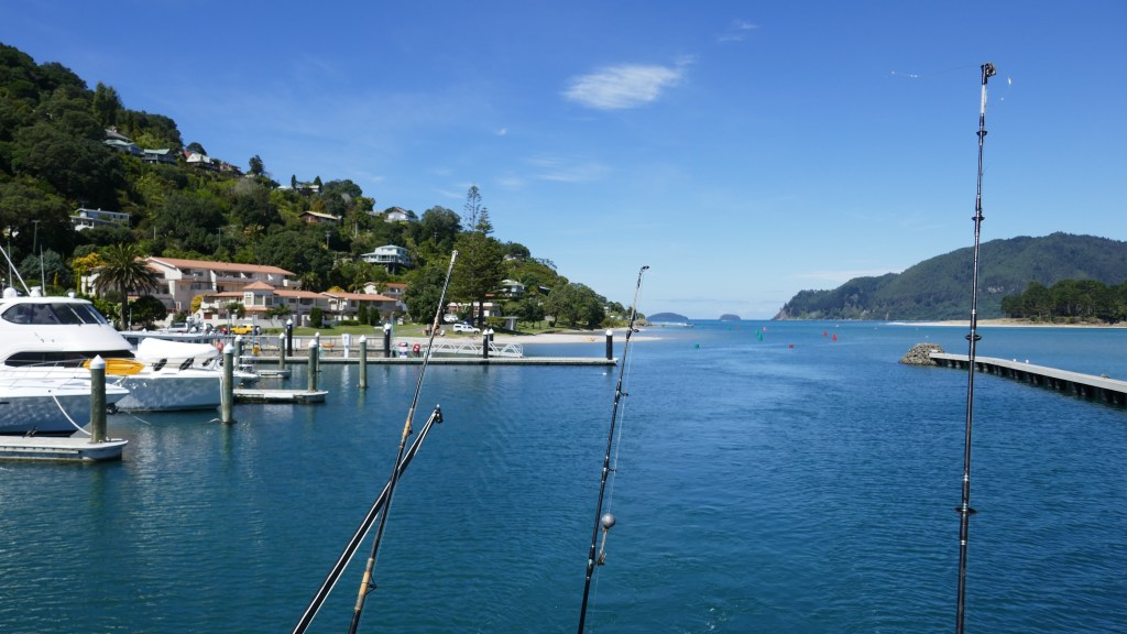 Best fishing in New Zealand