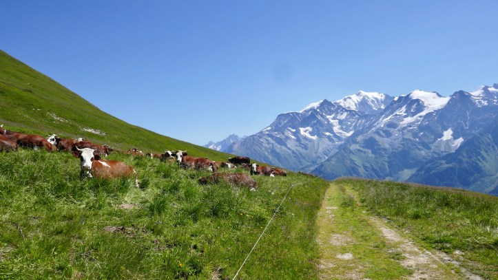 Meandering through the French Alps