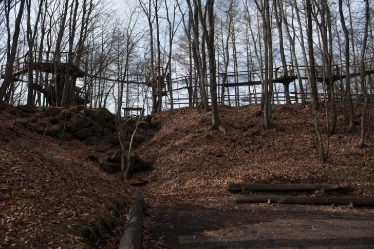 木の橋下から:軽井沢スウィートグラス