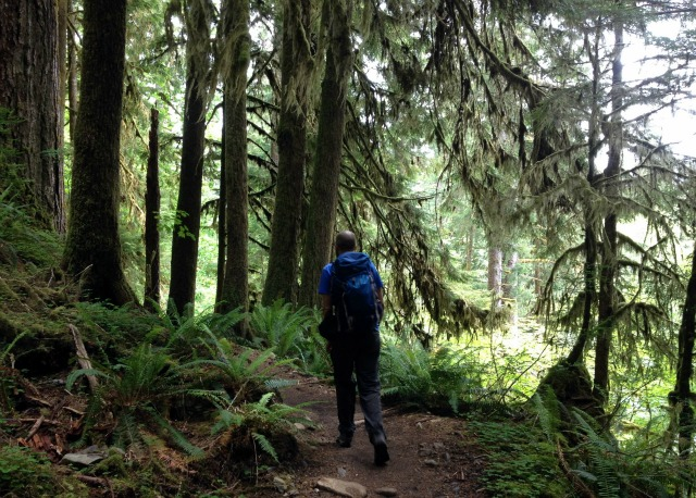 Hiking in Olympic National Park - Campfire Chic
