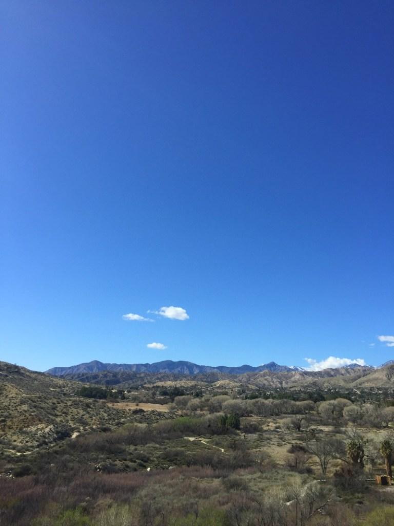 Hiking Big Morongo Canyon Preserve - California Desert Oasis Hiking - Kam of Campfire Chic