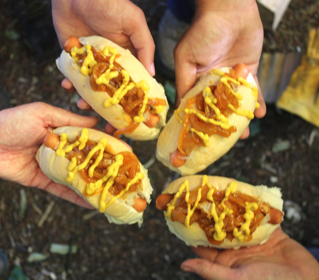 Ultimate New York Style Hot Dog