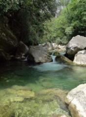 Le loup river