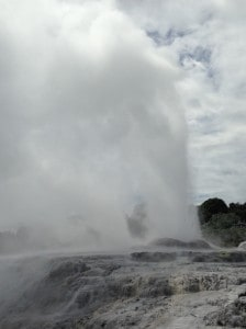 a geyser erupts at Te Puia, Rotorua.