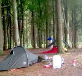 wild camping woods
