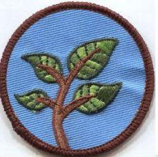 Nature - Sustainability