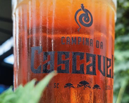 cerveja-cascavel-foco-500x400