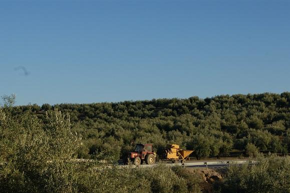 Los agricultores de la Comarca de Andújar se verán beneficiados.