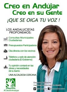 folleto participación