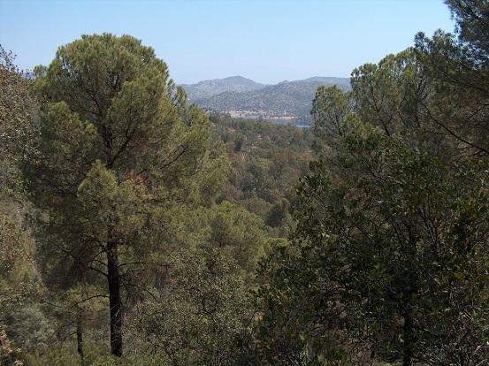 Parque Natrural