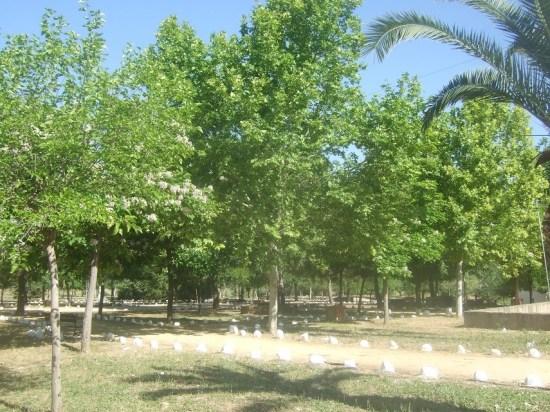 La Junta de Andalucía pone a disposición de todos los espacios protegidos.