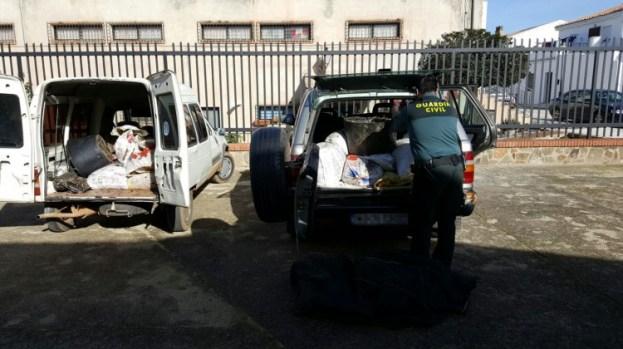 Incautación de la aceituna robada. Foto: Guardia Civil.