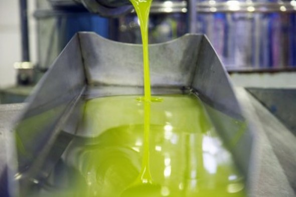 Venta del aceite de oliva