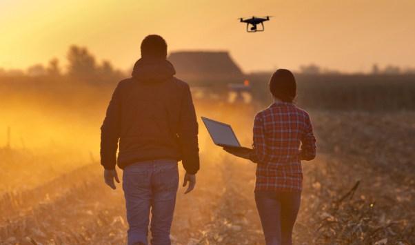 ayudas para la innovación en el sector agroalimentario
