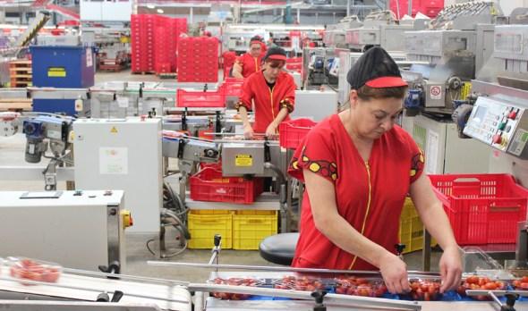 empleo femenino en Andalucía