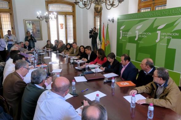 Consejo Provincial del Aceite de Oliva