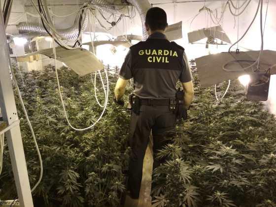 Marihuana en Mengíbar