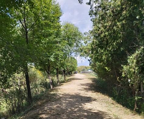 La Consejería de Agricultura interviene en la  mejora de la Puerta Verde de Andújar y Marmolejo.