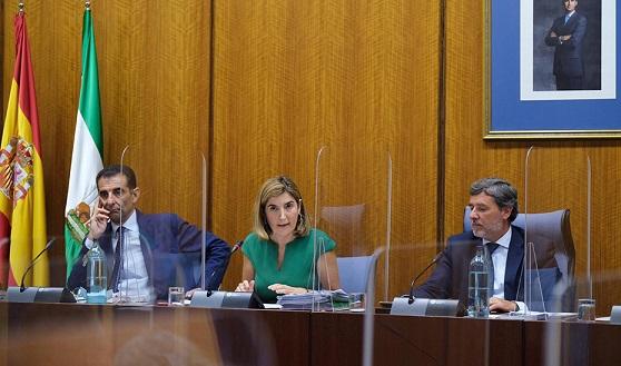 Incentivos de hasta 6.600 euros para contratos indefinidos que contemplen el teletrabajo.