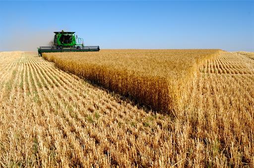 Abonados 6.718 millones de euros de las ayudas de la Política Agraria Común de la campaña 2019.