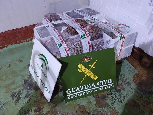 La Guardia Civil ha intervenido una partida de almejas y calamares, con la fecha de consumo preferente, caducada.