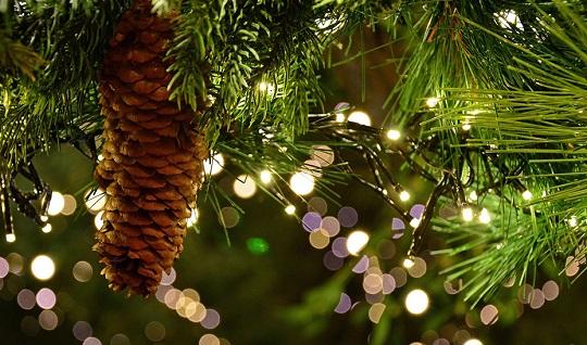 La decoración navideña luminosa debe indicar la potencia y el marcado CE.